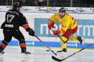 28.02.2018 - TS Ice Tigers Nürnberg - Düsseldorfer EG 2:1
