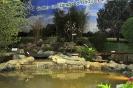 020034-Gartenmotive